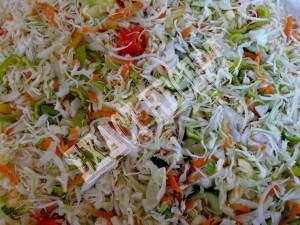 kvasena-zelenina1